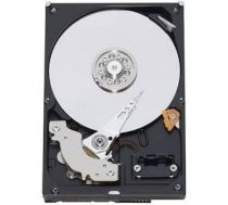 Western Digital HDD SATA 1TB 7200RPM 6GB/S/64MB WD10EZEX WDC