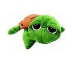 Suki Średni żółw lądowy   202374    039915952333