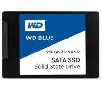 SSD|WESTERN DIGITAL|Blue|250GB|SATA 3.0|TLC|Write speed 525 MBytes/sec|Read speed 550 MBytes/sec|2,5 WDS250G2B0A
