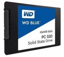 Western Digital 250GB WDS250G2B0A
