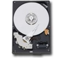 "Western Digital Caviar Blue 1TB 3.5"" 7200rpm SATA 6Gb/s 64MB 7200 RPM, 1000 GB, 64 MB WD10EZEX"