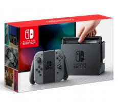 Nintendo Switch with Gray Joy Con