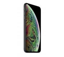 Apple iPhone XS Max 16.5 cm (6.5) 256 GB Dual SIM Grey